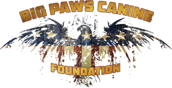 Big Paws Canine Foundation